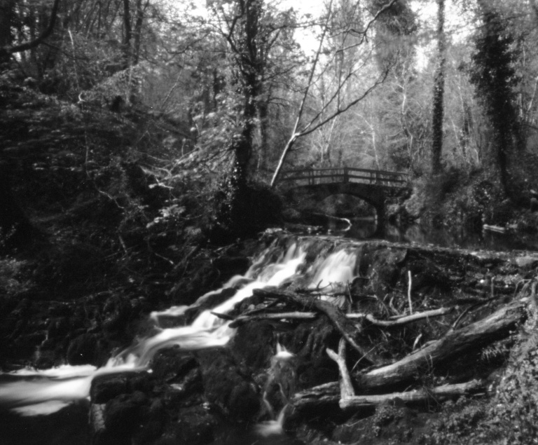 Rabbit Bridge - Pinhole